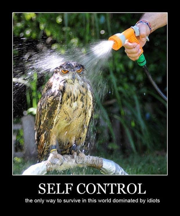 Контрол на емоциите